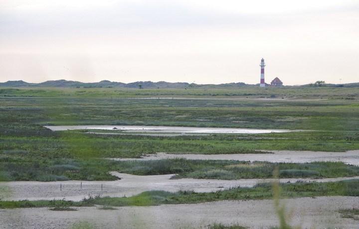 De IJzermonding Nieuwpoort landschap