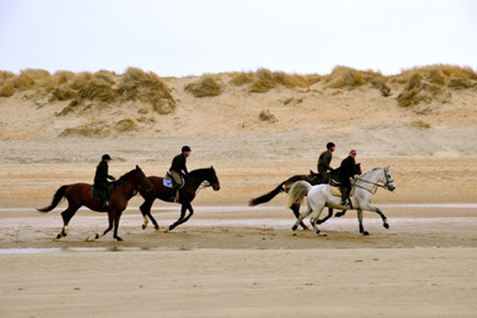 Paardrijden kust