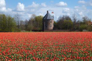 Voordeeluitjes in Noordwijk
