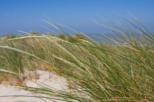 Huur een privé vakantiewoning aan de Belgische kust